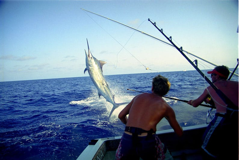 Costa rica fishing charters los suenos fishing go fish for Costa rica fishing charters
